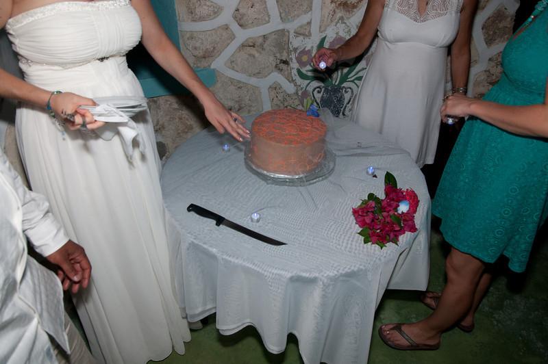 Jamaica 2012 Wedding-304