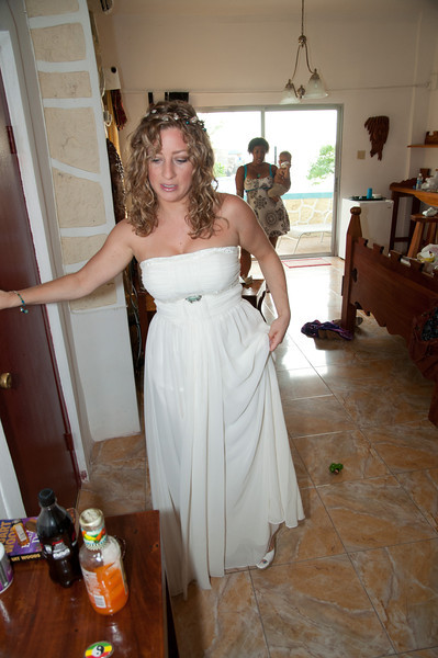 Jamaica 2012 Wedding-65