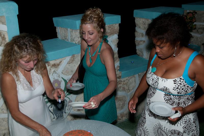 Jamaica 2012 Wedding-334