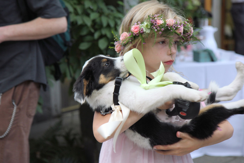 A serious moment for child and dog.