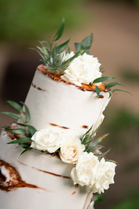 1233_Cake