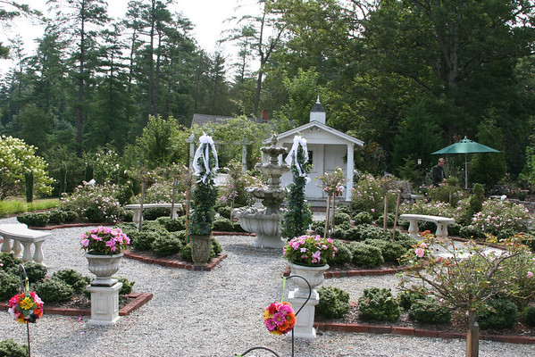 Overall view of garden.