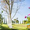 Vanessa+Jeff ~ Married!_012