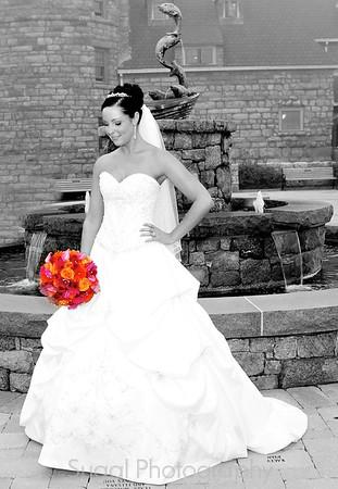 Vanessa and Justin Wedding Photos