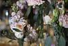 Vellano Bridal Show - 0014