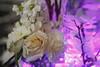 Vellano Bridal Show - 0013