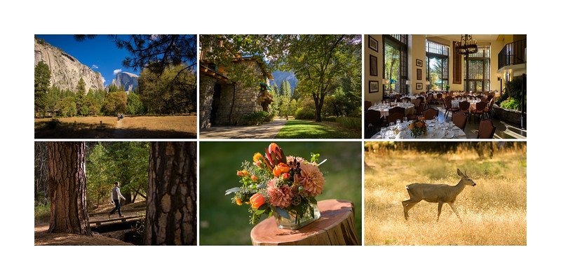 Ahwahnee_Yosemite_Wedding_Photography_-_California_-_Erin_and_Pete_25