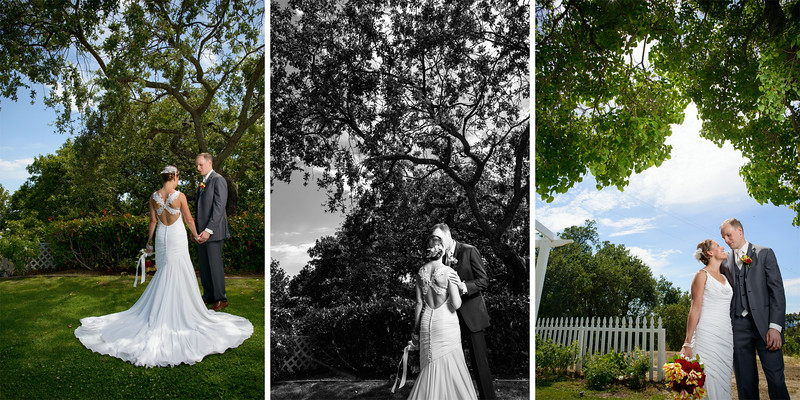 Byington_Winery_Wedding_Photography_-_Los_Gatos_-_Agnieszka_and_Peter_08