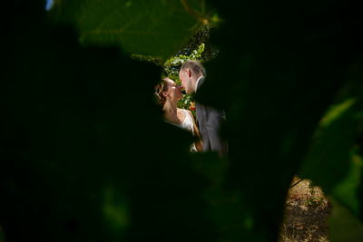 7938_d800a_Agnieszka_and_Peter_Byington_Winery_Los_Gatos_Wedding_Photography