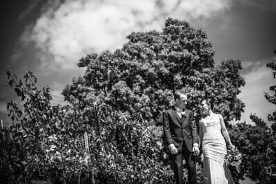 8098_d800b_Agnieszka_and_Peter_Byington_Winery_Los_Gatos_Wedding_Photography