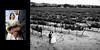 Casa_Real_at_Ruby_Hill_Winery_Wedding_Photography_-_Pleasanton_-_Lynda_and_John_17