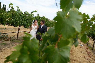 8623_d800a_Lynda_and_John_Casa_Real_Ruby_Hill_Winery_Pleasanton_Wedding_Photography