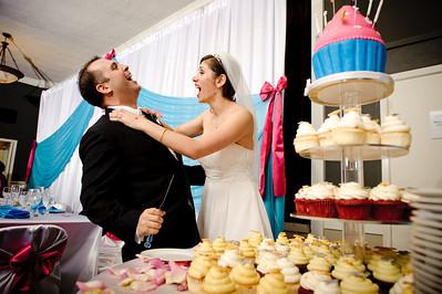 7708-d700_Chris_and_Parisa_San_Jose_Wedding_Photography