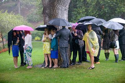 3592_d800_Nicole_and_Jesse_Shakespeare_Garden_Golden_Gate_Park_Wedding_Photography