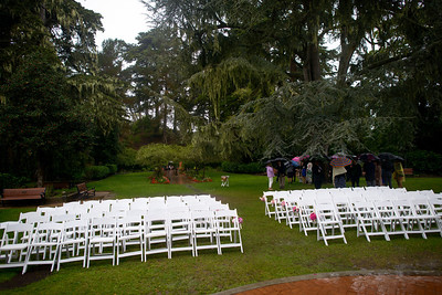 6867_d800_Nicole_and_Jesse_Shakespeare_Garden_Golden_Gate_Park_Wedding_Photography