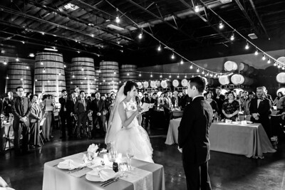 0346_d800b_Joanne_and_Fred_Concannon_Vineyard_Livermore_Wedding_Photography