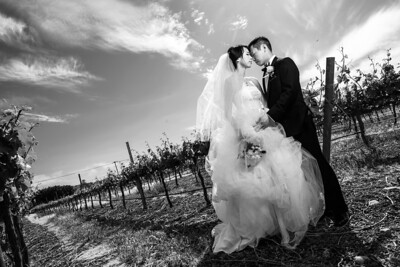 0213_d810a_Joanne_and_Fred_Concannon_Vineyard_Livermore_Wedding_Photography