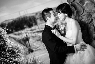 3664_d810a_Joanne_and_Fred_Concannon_Vineyard_Livermore_Wedding_Photography