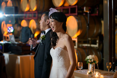 4377_d810a_Joanne_and_Fred_Concannon_Vineyard_Livermore_Wedding_Photography