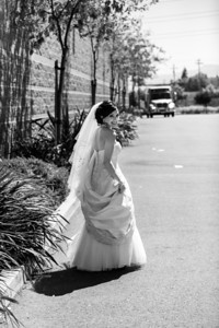 8327-d3_Lilly_and_Chris_Crowne_Plaza_Cabana_Hotel_Palo_Alto_Wedding_Photography