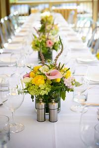 4793_d800_Sandy_and_Sanjay_El_Dorado_Kitchen_Sonoma_Wedding_Photography