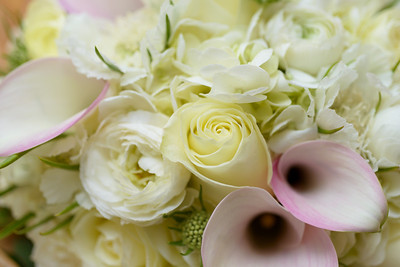 4698_d800_Sandy_and_Sanjay_El_Dorado_Kitchen_Sonoma_Wedding_Photography