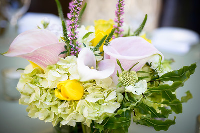 4804_d800_Sandy_and_Sanjay_El_Dorado_Kitchen_Sonoma_Wedding_Photography
