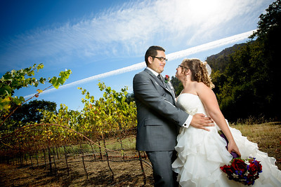 3079_d800_Rebekah_and_Anthony_Elliston_Vineyards_Sunol_Wedding_Photography