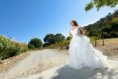 2940_d800_Rebekah_and_Anthony_Elliston_Vineyards_Sunol_Wedding_Photography