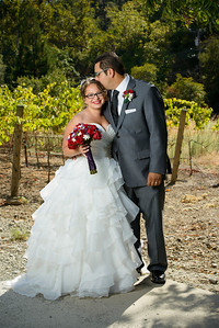 2951_d800_Rebekah_and_Anthony_Elliston_Vineyards_Sunol_Wedding_Photography