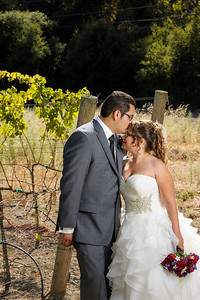 5261_d3_Rebekah_and_Anthony_Elliston_Vineyards_Sunol_Wedding_Photography
