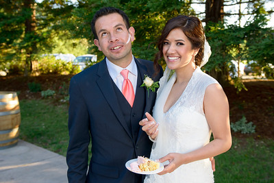 0668_Maria_and_Daniel_Fortino_Winery_Wedding_Photography_by_Sam_Fontejon