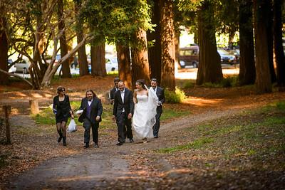 4762_d800_pamela and william wedding_wagners grove harvey west park santa cruz