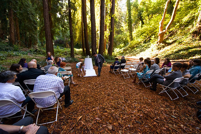 7492_d800_pamela and william wedding_wagners grove harvey west park santa cruz