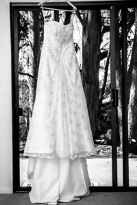 4596_d800_pamela and william wedding_wagners grove harvey west park santa cruz
