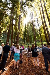 7487_d800_pamela and william wedding_wagners grove harvey west park santa cruz