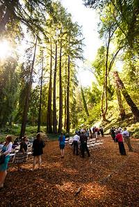7485_d800_pamela and william wedding_wagners grove harvey west park santa cruz
