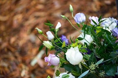 4745_d800_pamela and william wedding_wagners grove harvey west park santa cruz