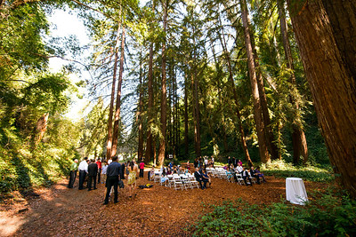 7488_d800_pamela and william wedding_wagners grove harvey west park santa cruz