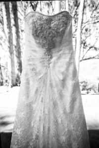 7465_d800_pamela and william wedding_wagners grove harvey west park santa cruz