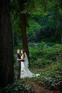 4950_d800_pamela and william wedding_wagners grove harvey west park santa cruz