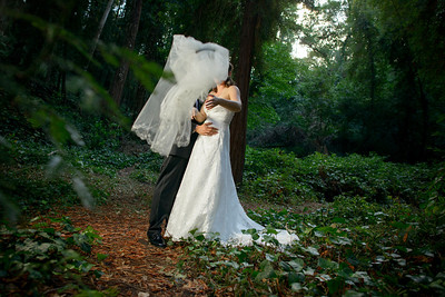 7619_d800_pamela and william wedding_wagners grove harvey west park santa cruz