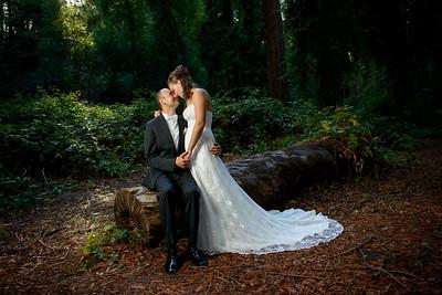 7644_d800_pamela and william wedding_wagners grove harvey west park santa cruz