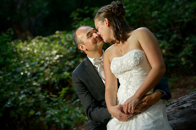 4972_d800_pamela and william wedding_wagners grove harvey west park santa cruz