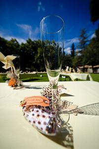 3507-d700_Noel_and_Marin_Highlands_Park_Felton_Wedding_Photography