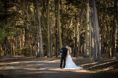 4122_d810a_Shannon_and_Sean_Swedenborgian_Church_Italian_Athletic_Club_San_Francisco_Wedding_Photography
