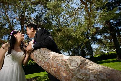 8011_d800a_Uyen_and_John_Japanese_Tea_Gardens_San_Jose_Wedding_Photography