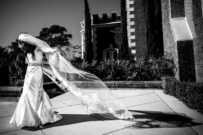 3214_d800_Danielle_and_Tony_Kohl_Mansion_Burlingame_Wedding_Photography