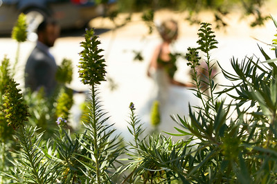 0074_d800b_Stevie_and_Angelo_Los_Laureles_Lodge_Carmel_Valley_Wedding_Photography