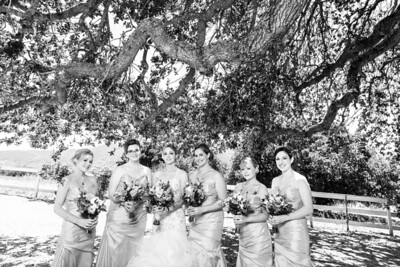 0620_d800a_Stevie_and_Angelo_Los_Laureles_Lodge_Carmel_Valley_Wedding_Photography